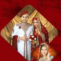 Shami Photos