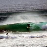 surfershort