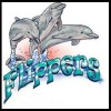 Photo de Flippers