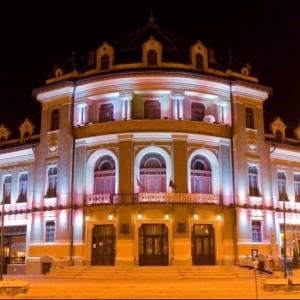 Teatrul Tineretului Piatra-Neamț