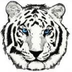 White Tiger's Avatar