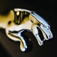 the_jaguar
