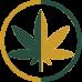 gli effetti, Gli effetti della Cannabis Sativa e della Cannabis Indica