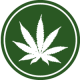 Profile picture of WeedBiz