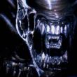 Aliennet