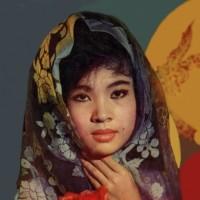 Dòng nhạc Lê Minh Bằng, qua tiếng hát Thanh Thúy – Thương đời hoa (Lê Dinh)