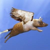 wingedpig.com