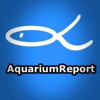 Ein sich selbstüberlassenes Aquarium, geht das? - EcoSphere!