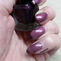 Nail Polish Products On EWG