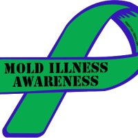 Week 1 of My Mold Illness Treatment   Spoonie Chronicles