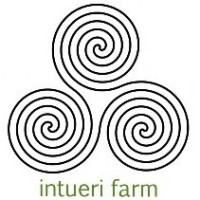 Intueri Design & Ground Plans