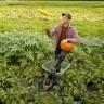 Agriculture bio et agroécologie