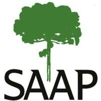 Resultado de imagem para saap pinheiros